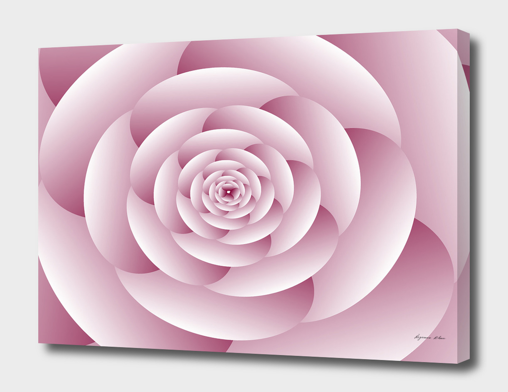 Abstract Flower Spiral Background
