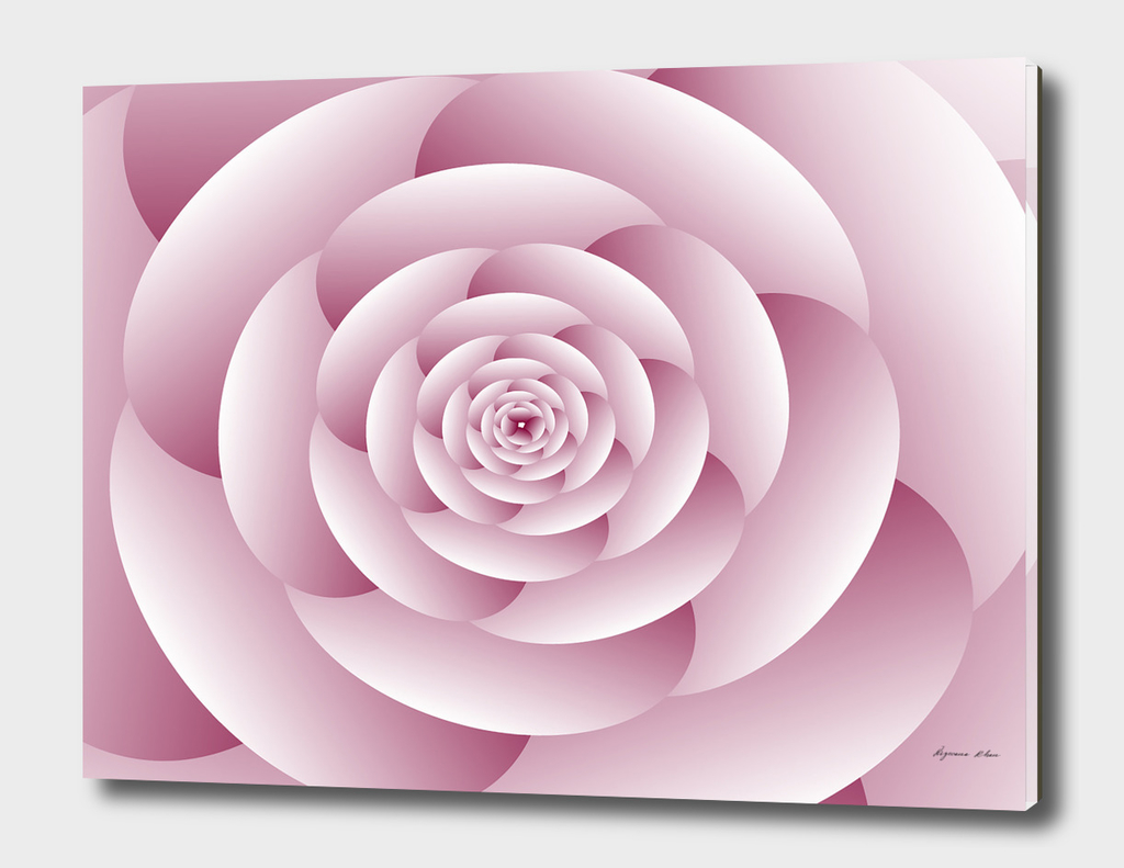 Abstract Flower Spiral Background