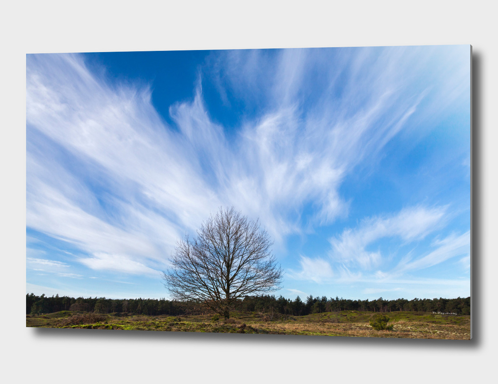 Beautiful sky at the Veluwe