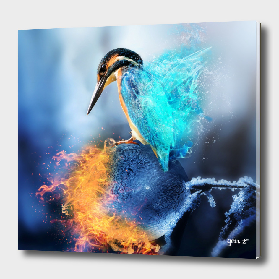 Kingfisher Ice and Fire by GEN Z