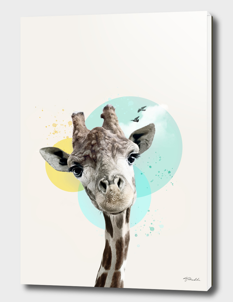 Brooding  giraffe with circles