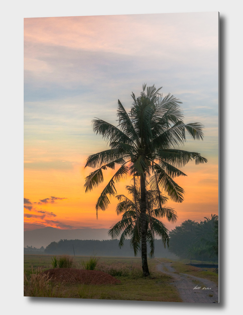 A Postcard from Malaysia