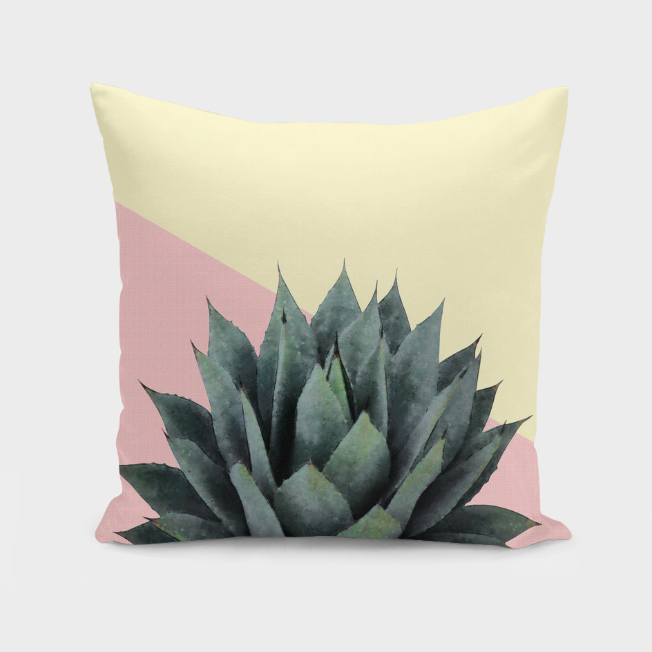 Agave Plant on Pink and Lemon Wall