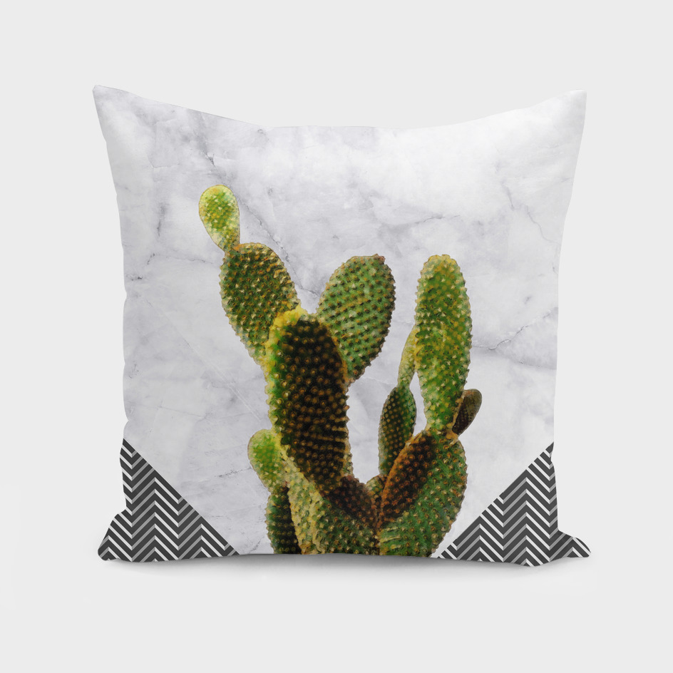 Cactus on White Marble and Checker Wall
