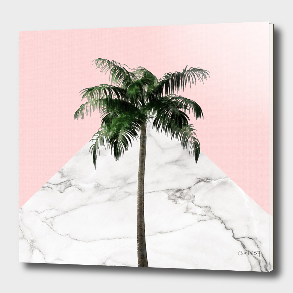 Palm on Pink and White Marble