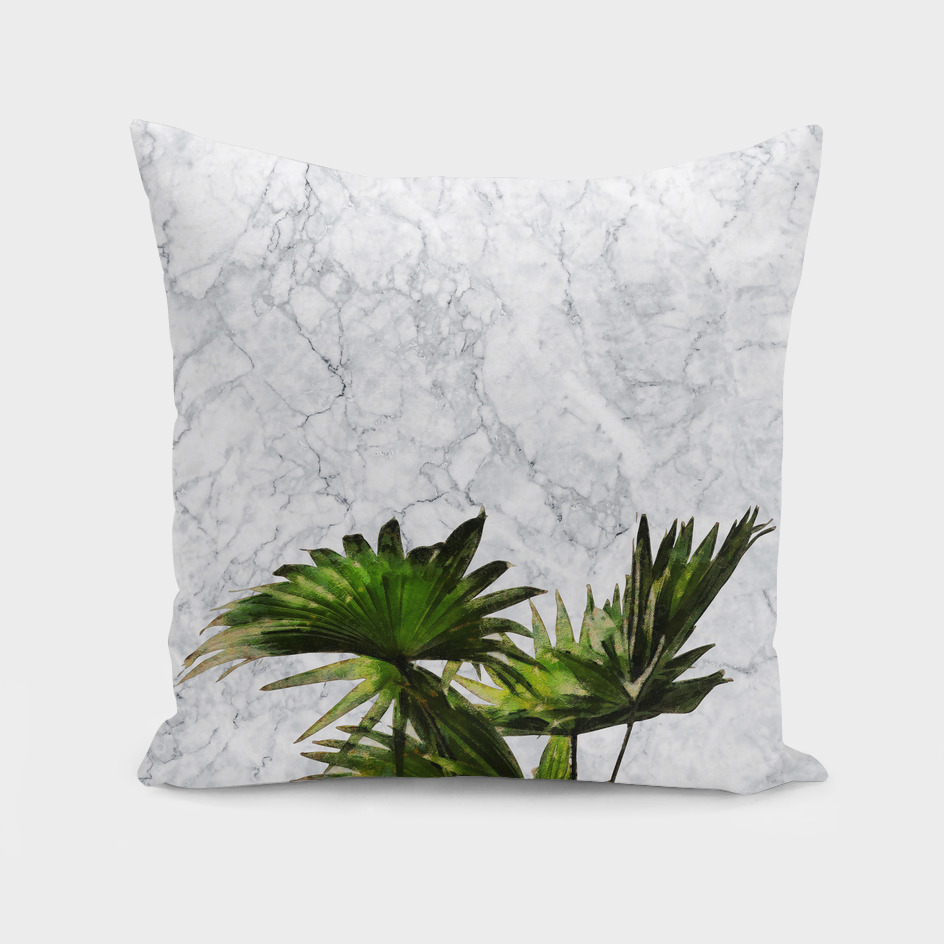 Palm Plant on Teal and White Marble Wall
