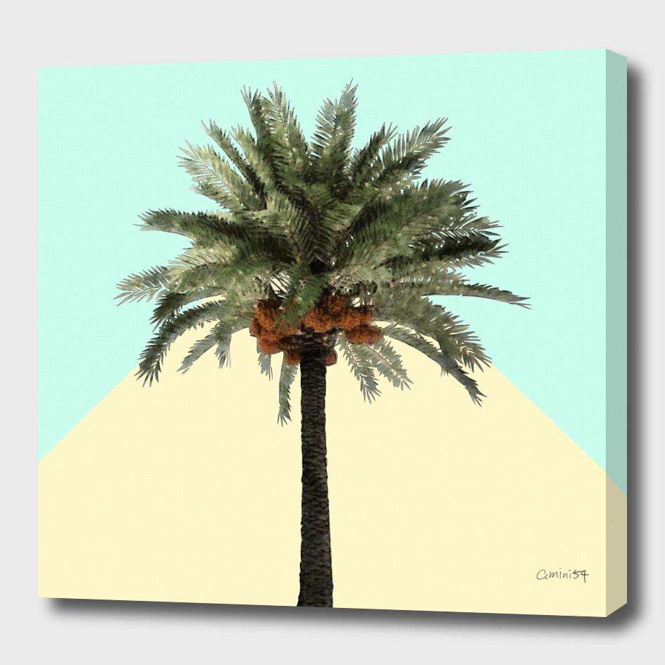 Palm on Cyan and Lemon Wall