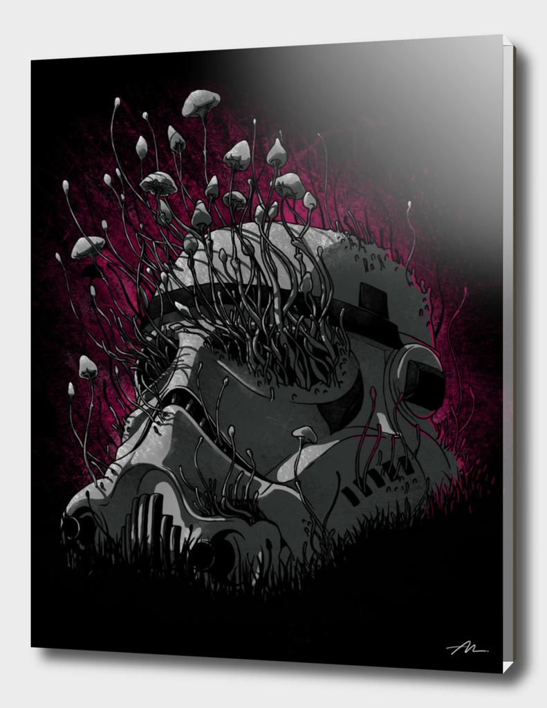 Shroom Trooper