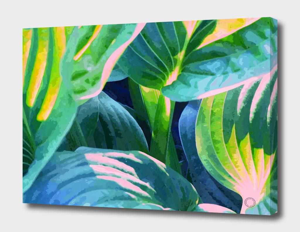 Foliage V6