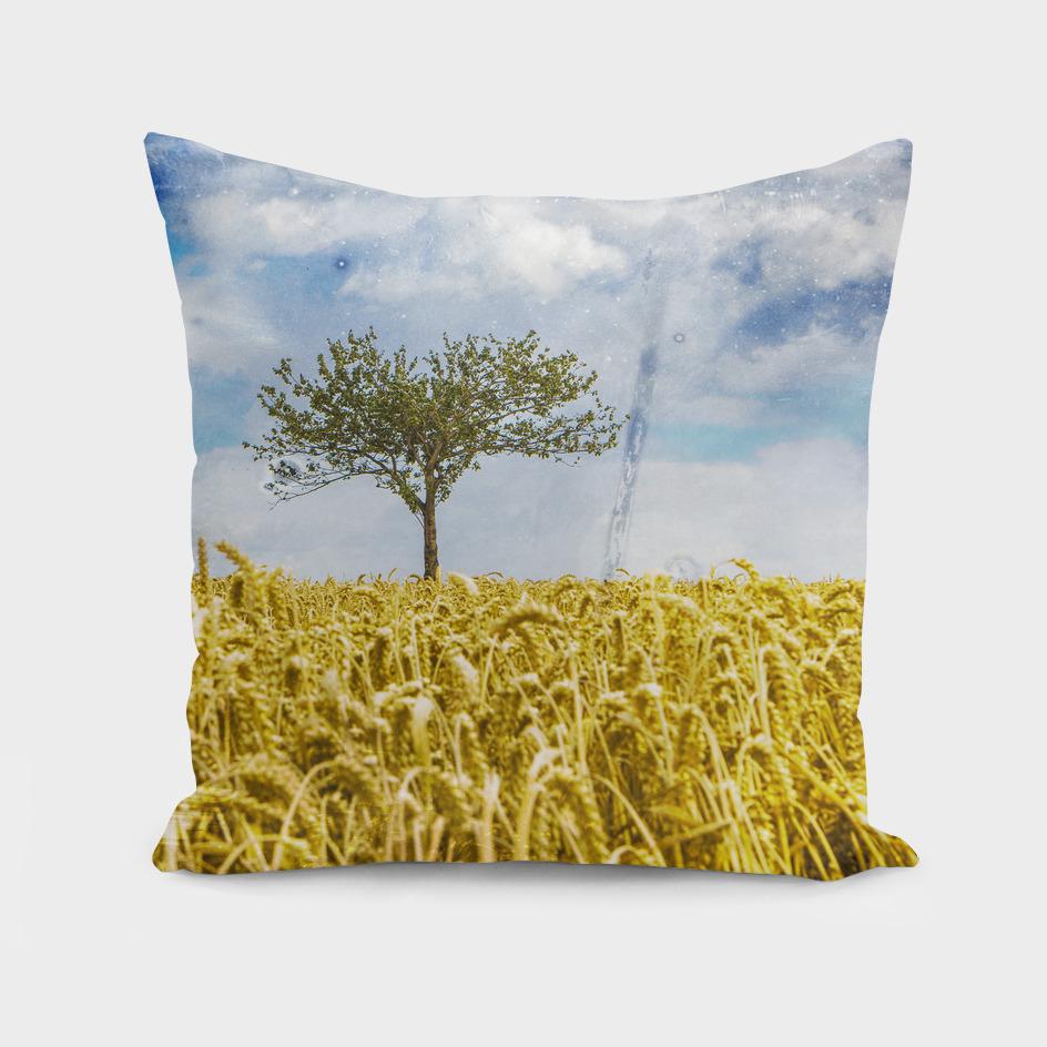 Single tree in a wheat field