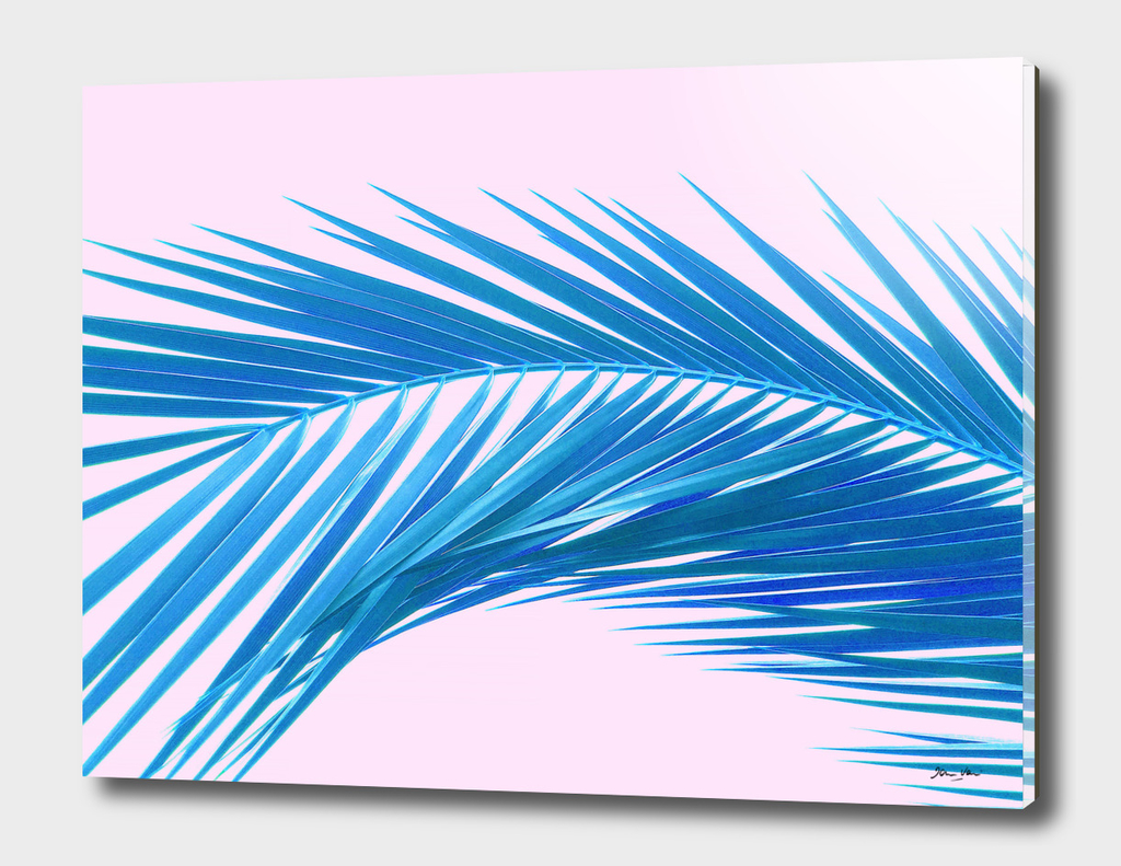 Tropical Dream - Azure and Pink
