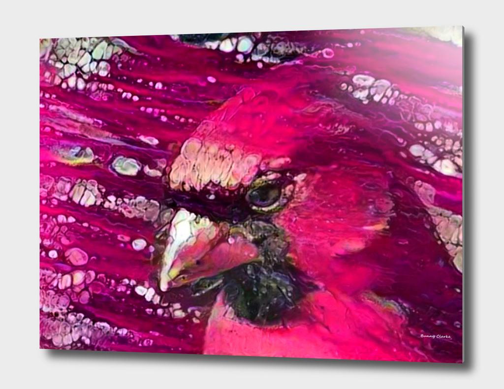 Redbird Tribute