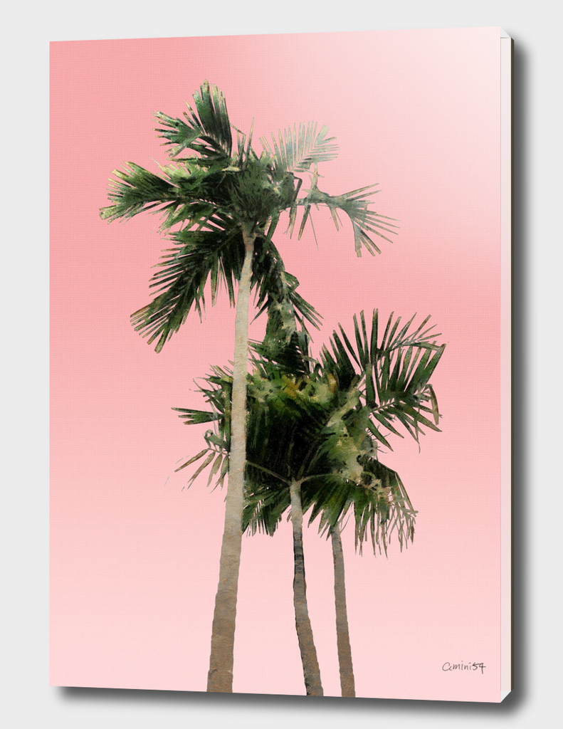 Palm Trees on Pink Wall