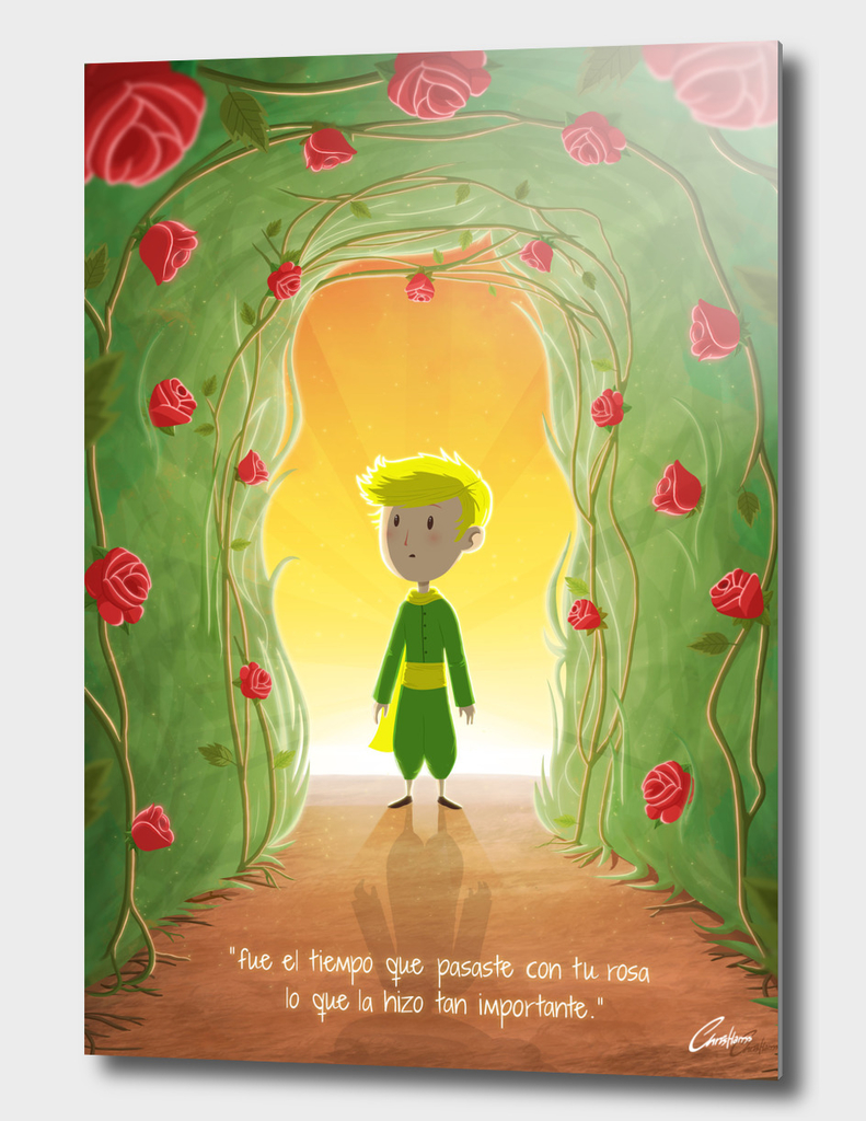Little Prince and the Roses (SPANISH VERSION)