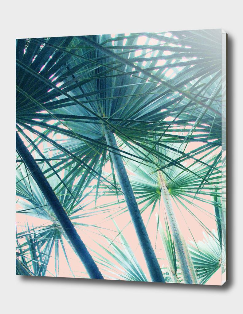 Tropical V3