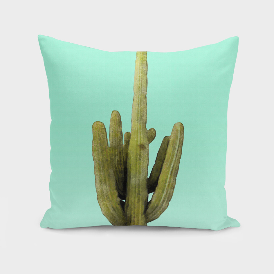 Cactus on Cyan Wall