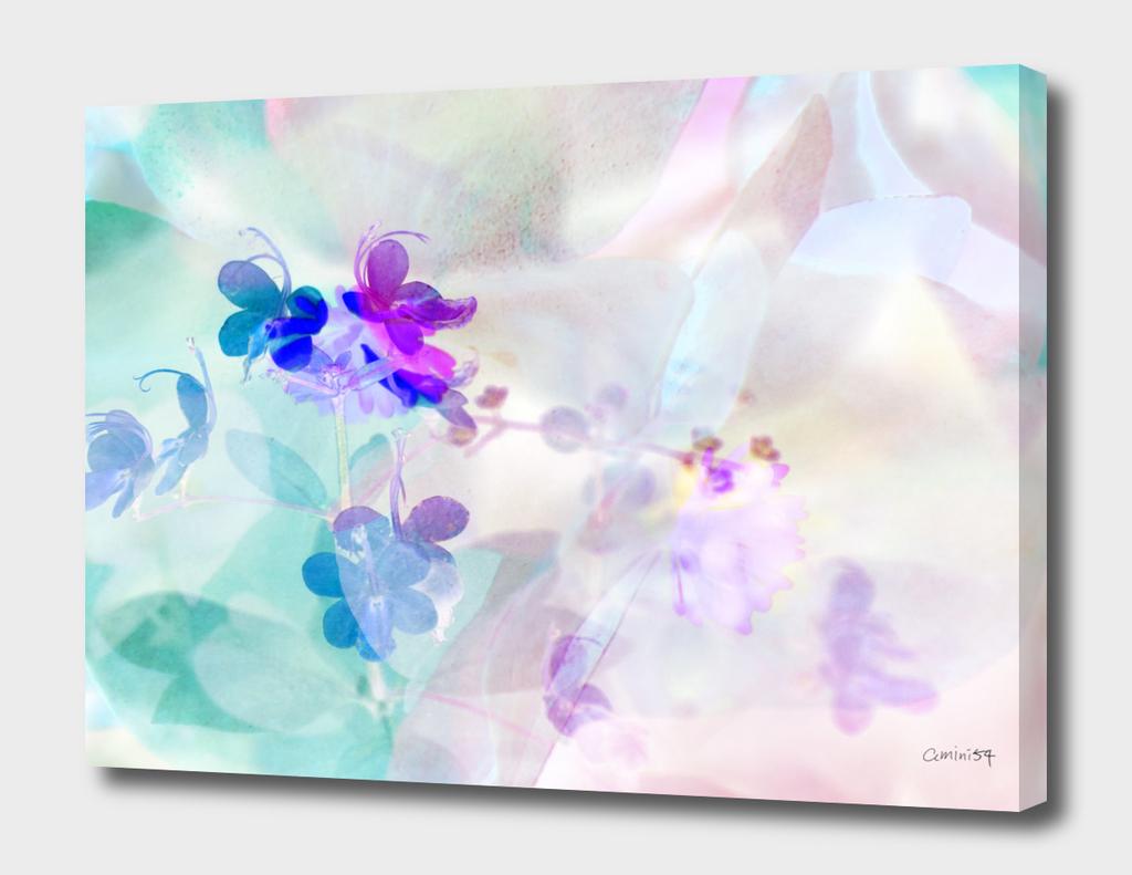 Wild Flowers VII