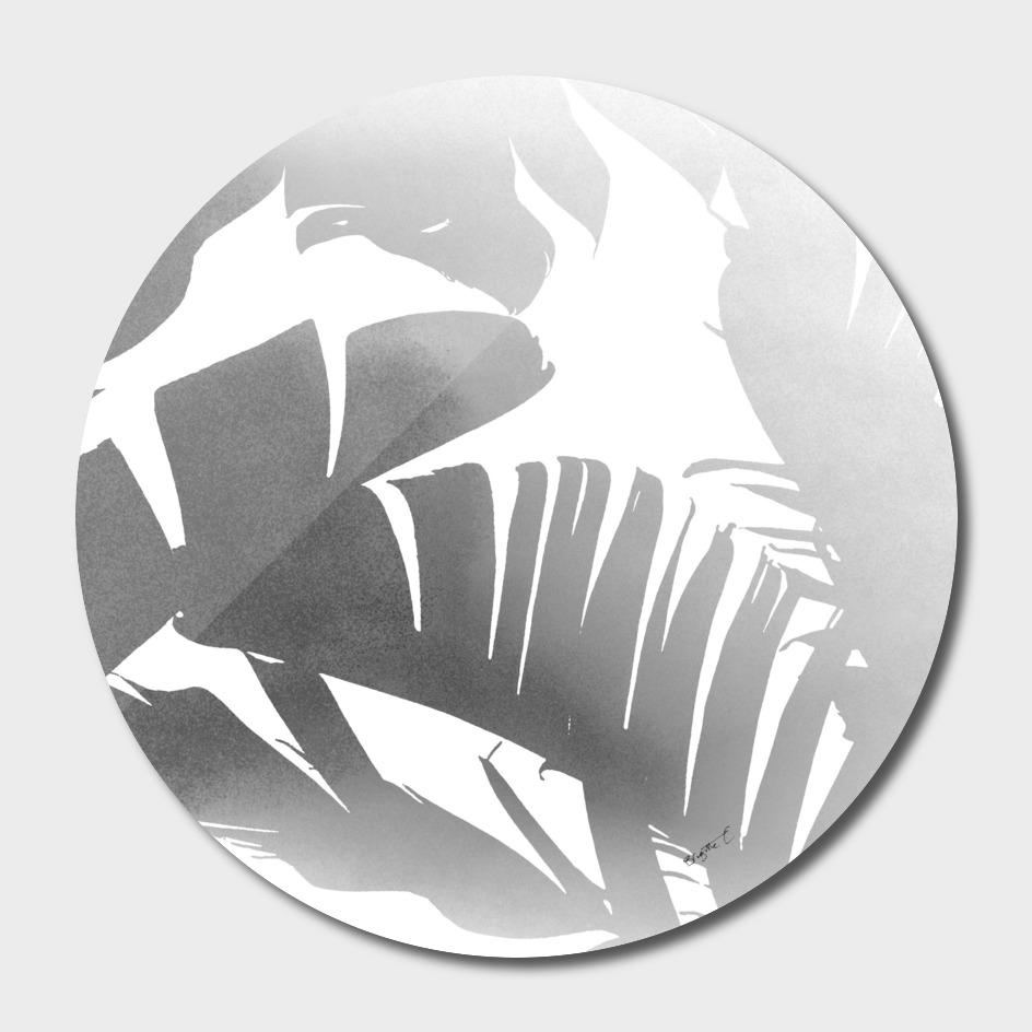 Black and White Tropical Banana Leaves In The Fog Design