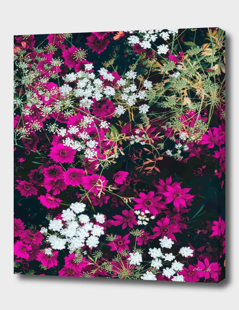 wildflowers  1-3