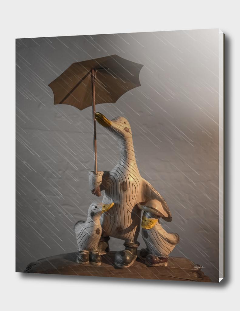 Quacking In The Rain