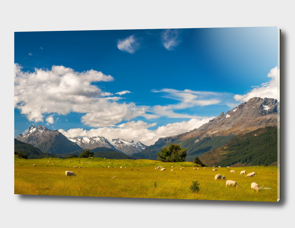 Beautiful Pastoral Alpine Landscape in New Zealand