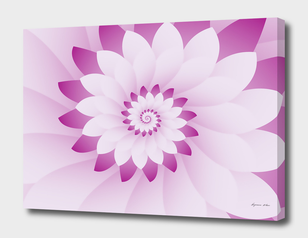 Abstract Pink & White Floral Design