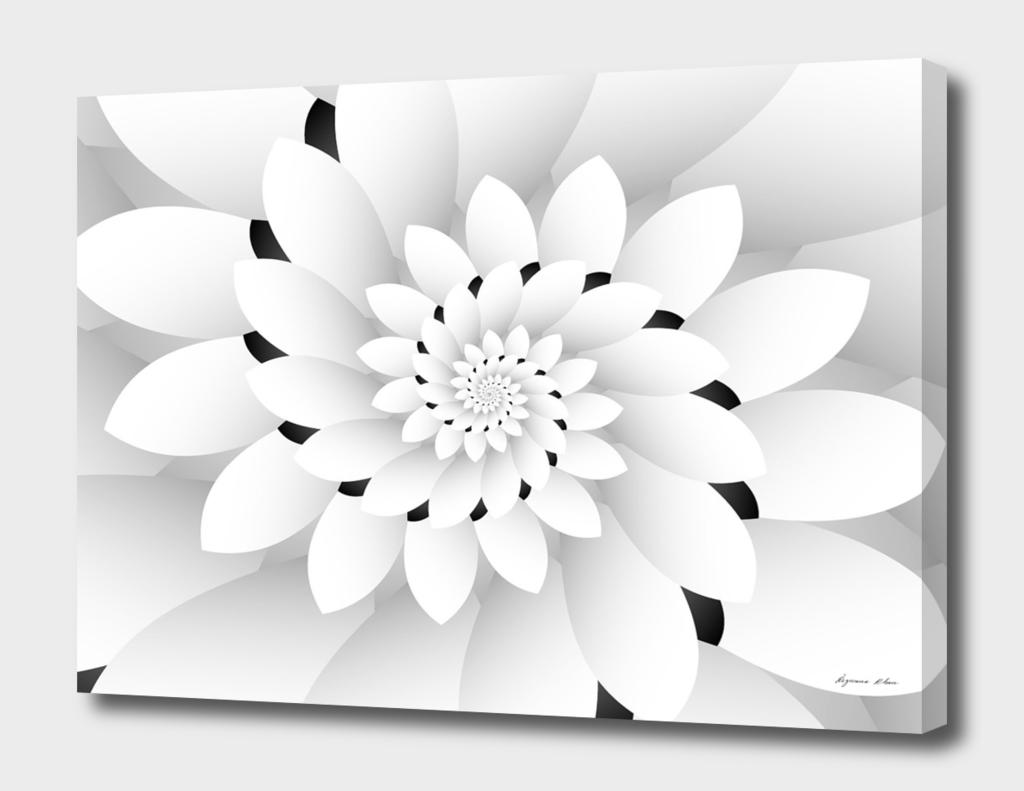 Monochrome Floral Design