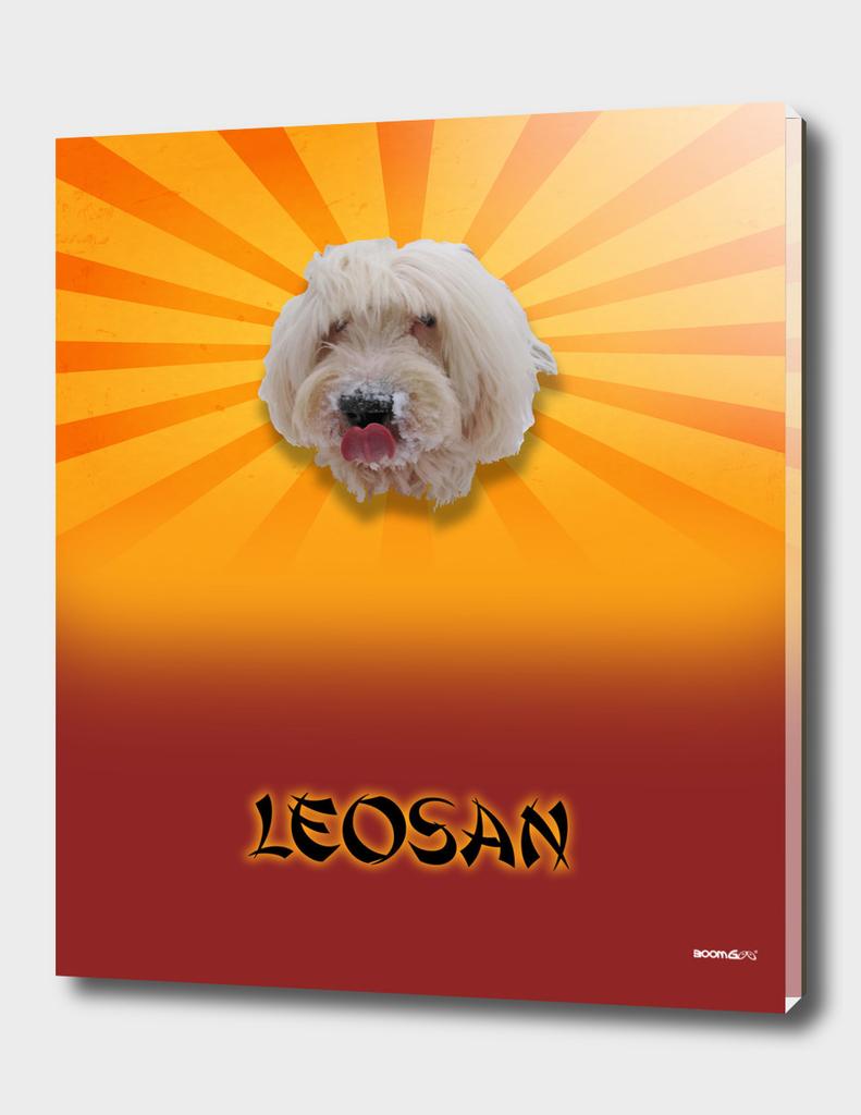 BoomGoo's Leo-San blend 2