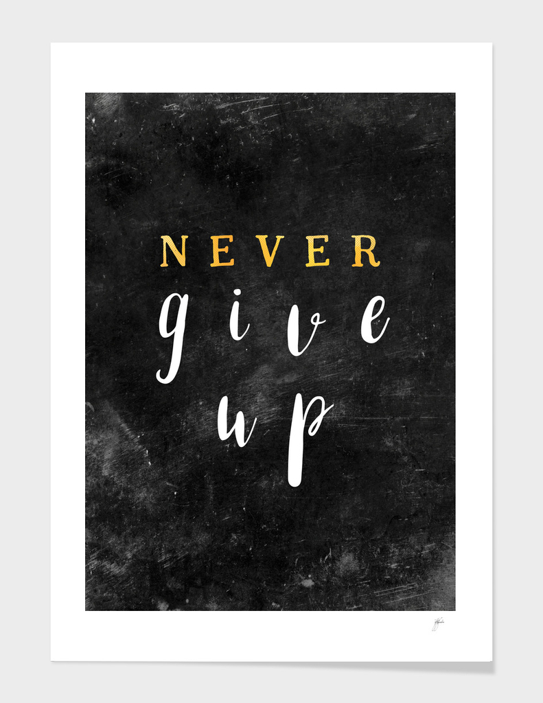 Never give up #motivationialquote