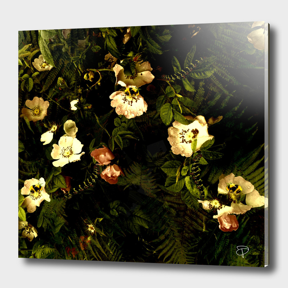 Floral Night III