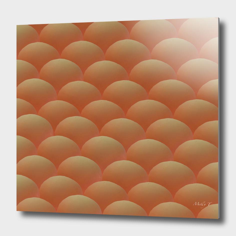 Egg Scallop