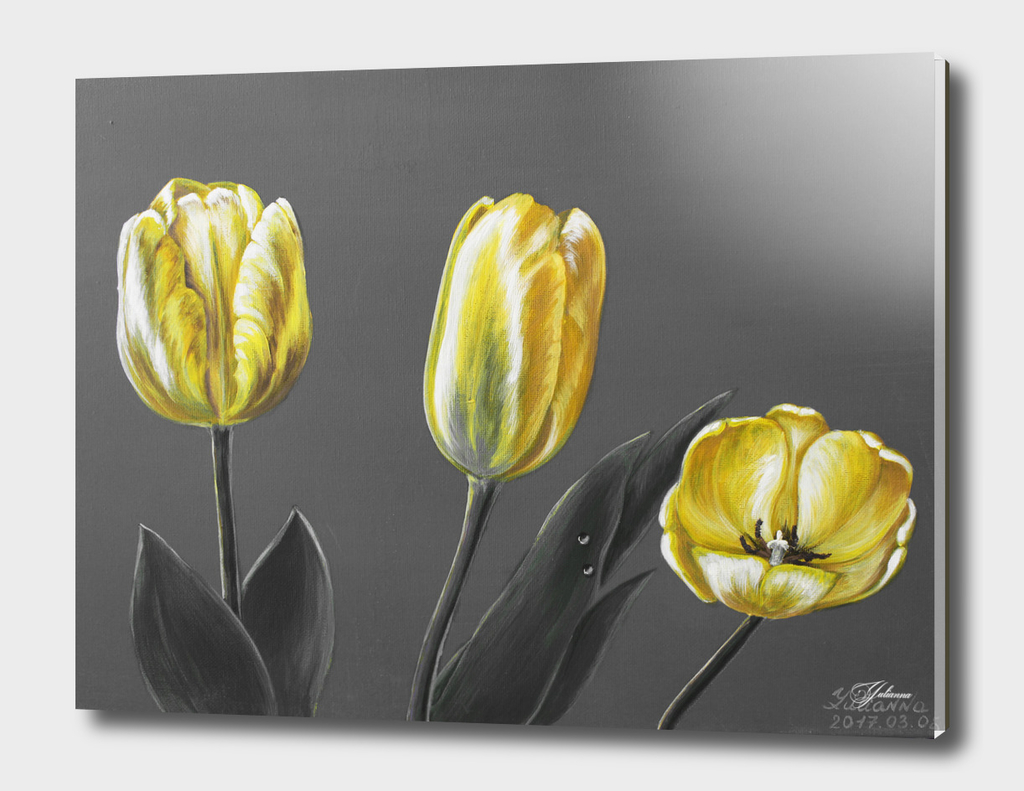 yellow tulips with grey
