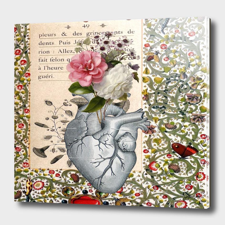 my heart is a garden