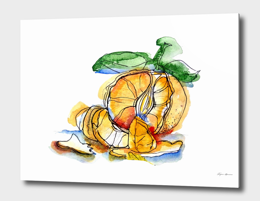 Tangerine illustration