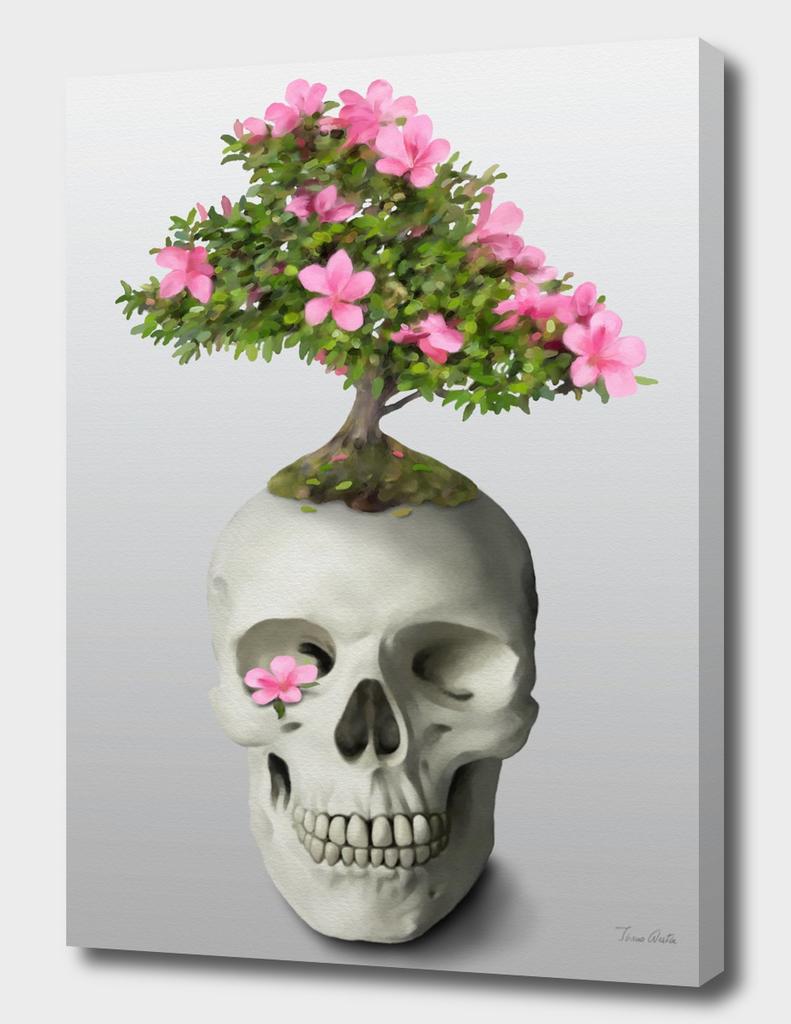 Bonsai Skull
