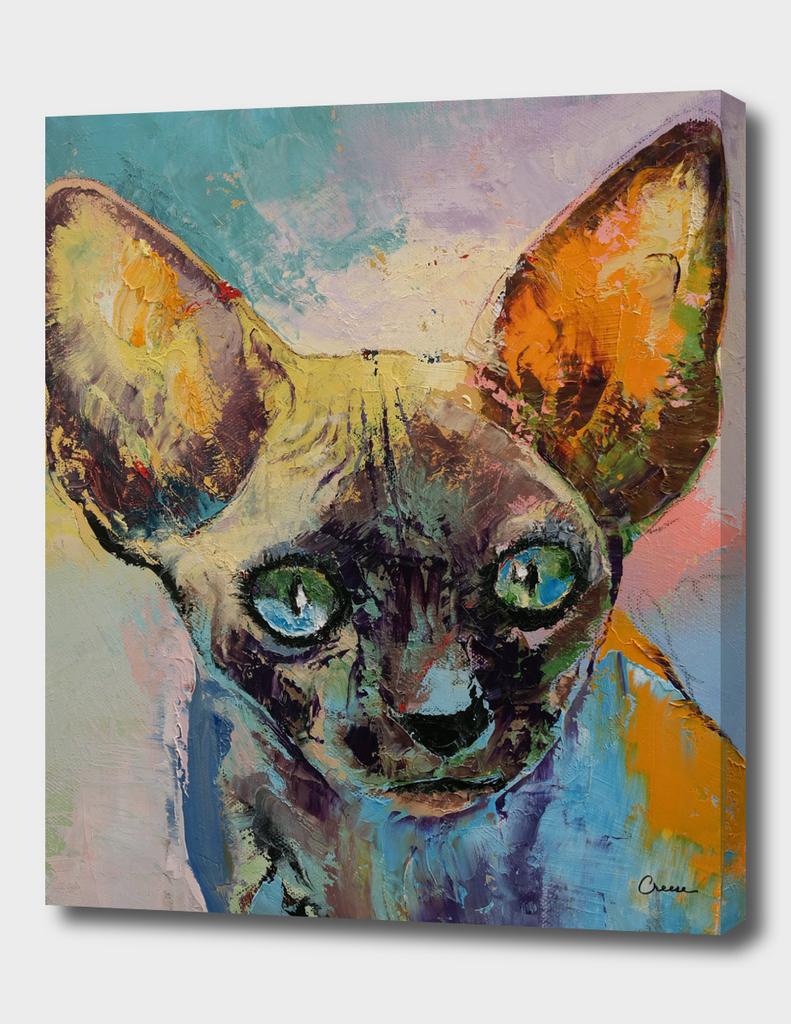Sphynx Cat Portrait