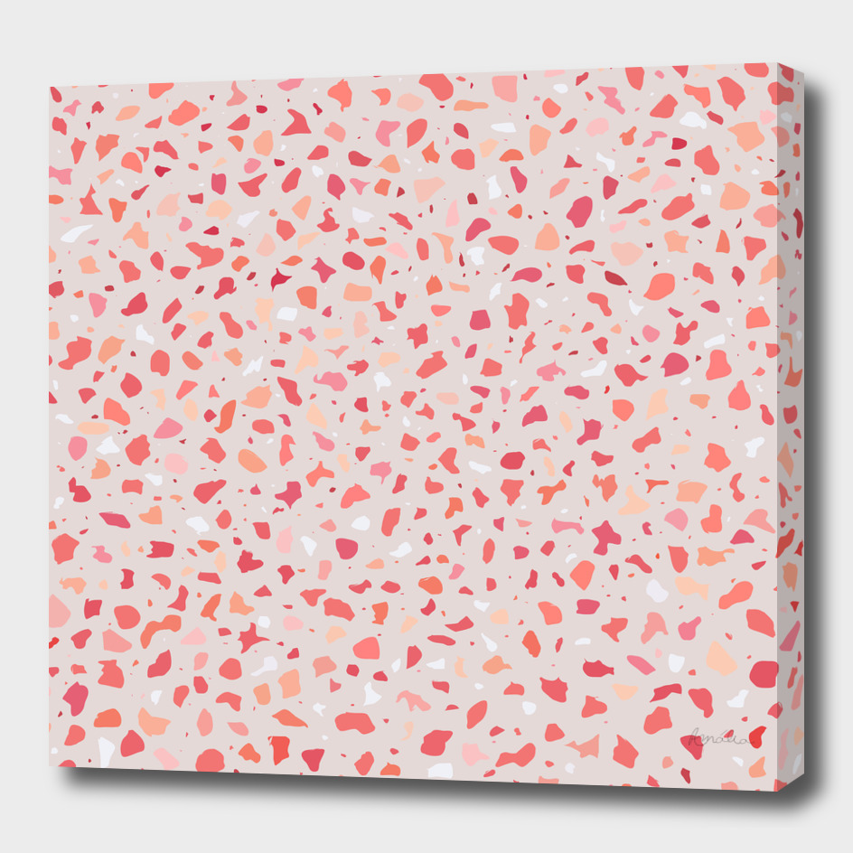 AFE Coral Terrazzo Pattern