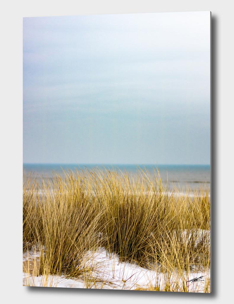 Winter beach