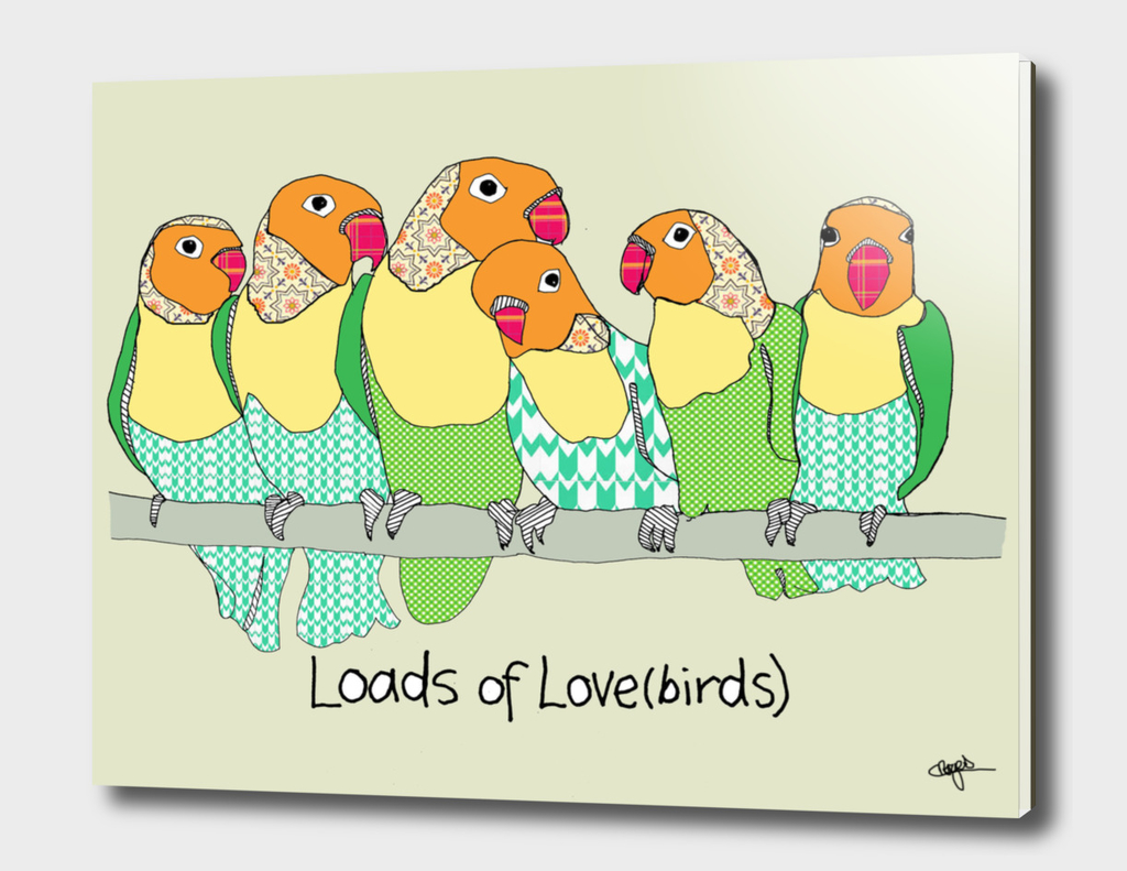 Loads of lovebirds