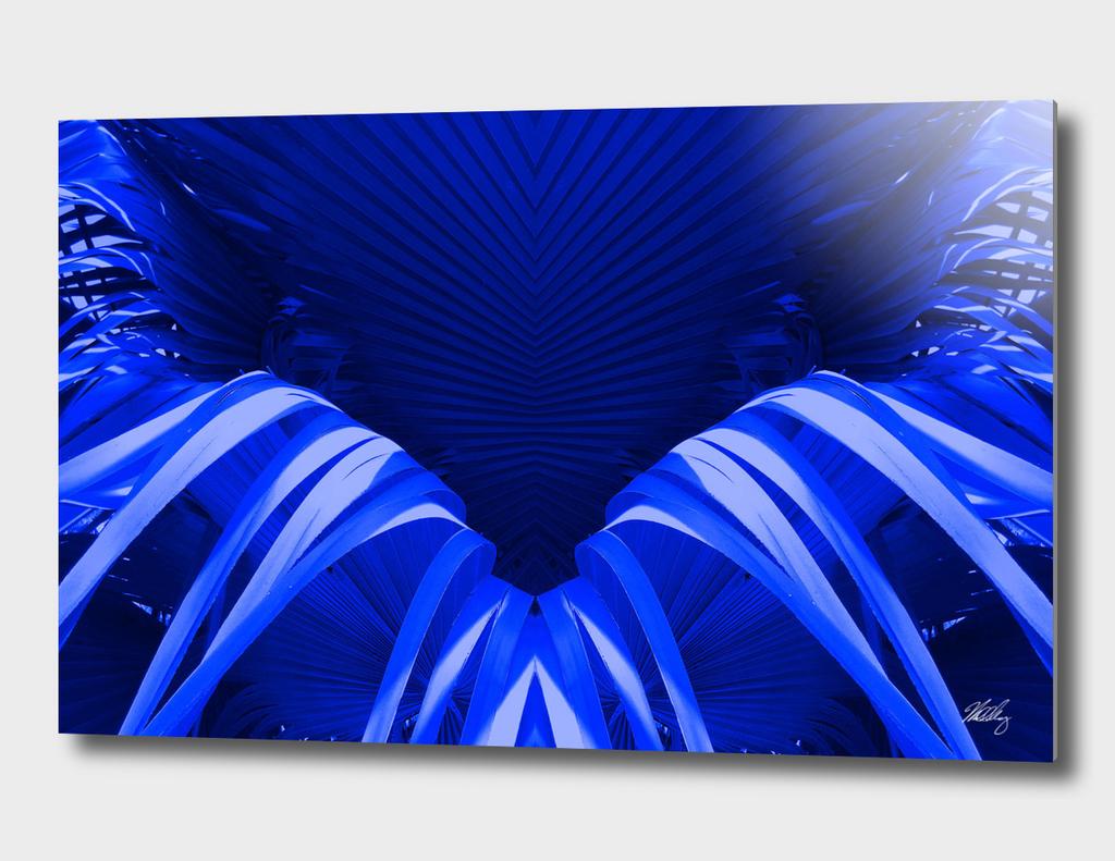 Blue Fronds