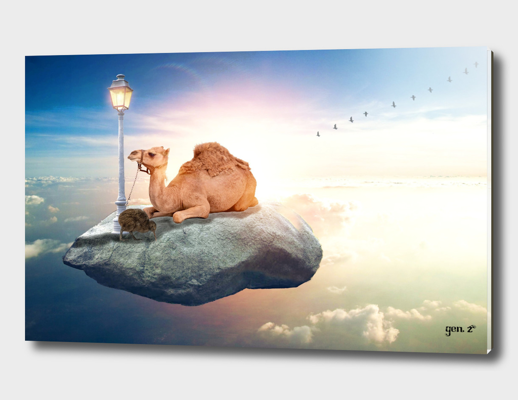 Kiwi and camel riding on a rock in the sky by GEN Z