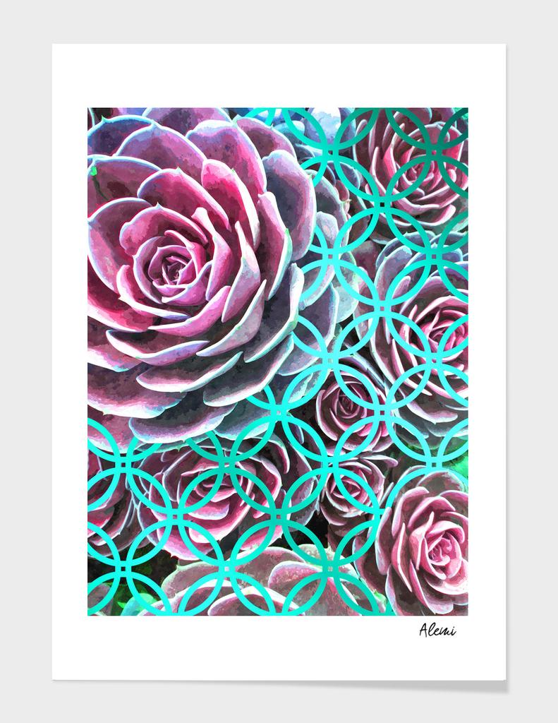 Purple Succulent Turquoise Geometric