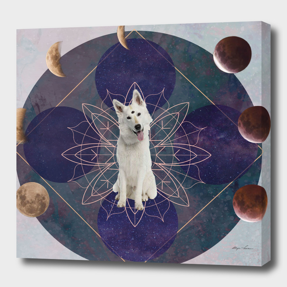 Doggy Mystic Dog
