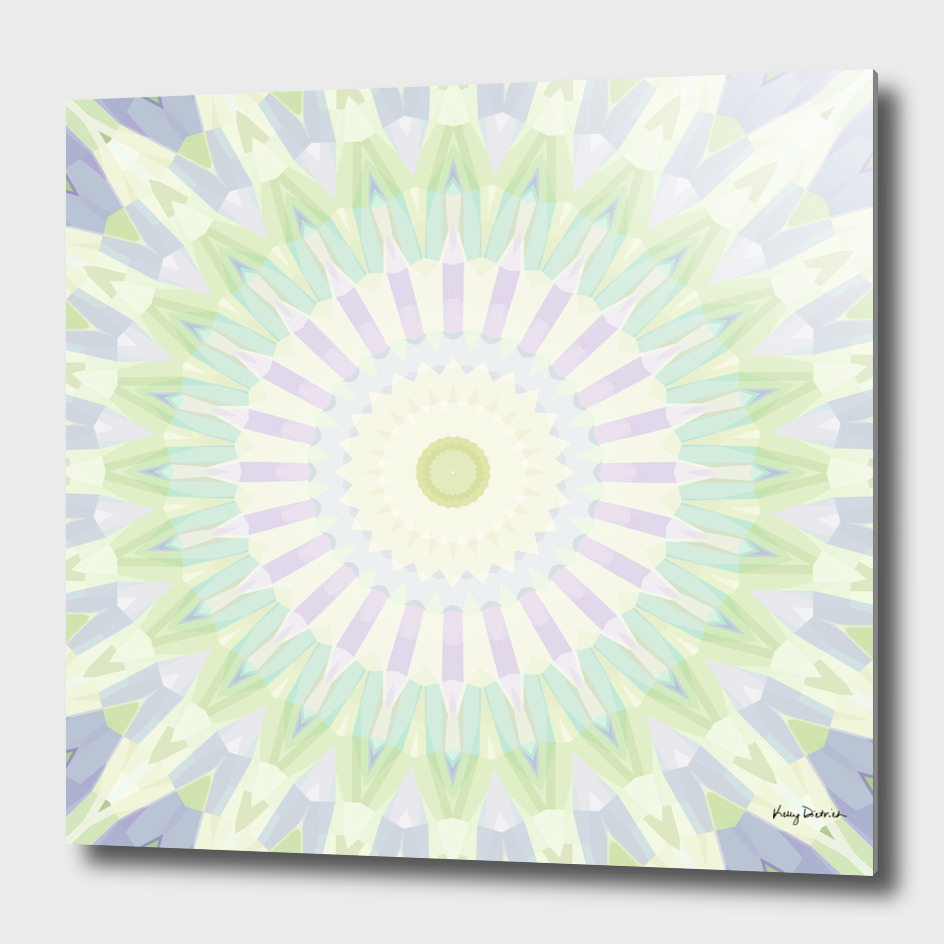 Rhythm of Spring Mandala