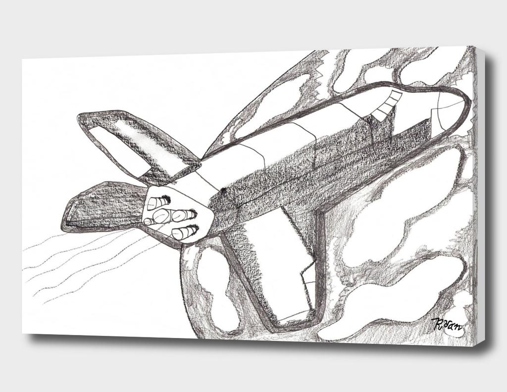 Space Shuttle Orbit