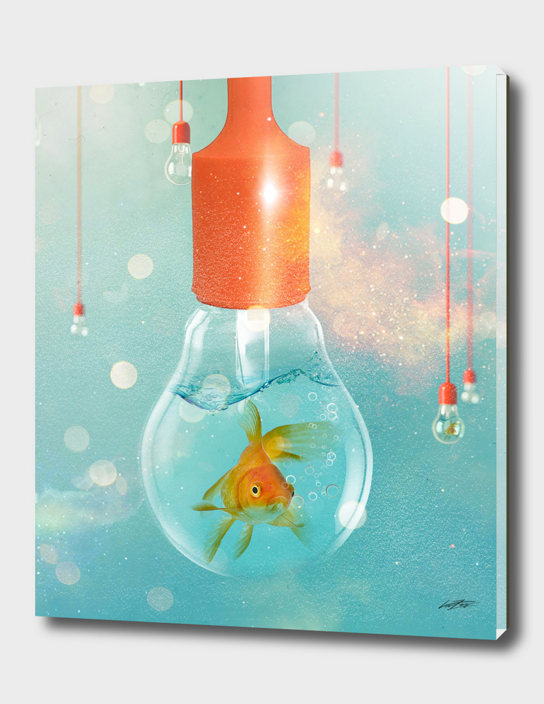 GOLDFISH IDEAS