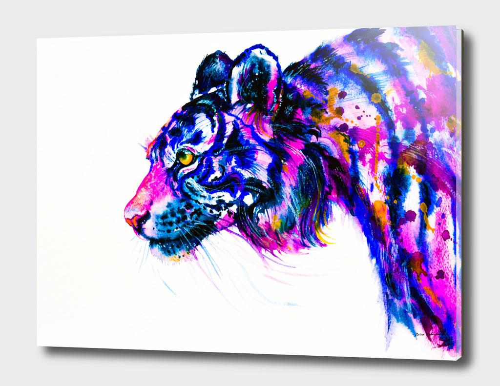 Tiger Glance