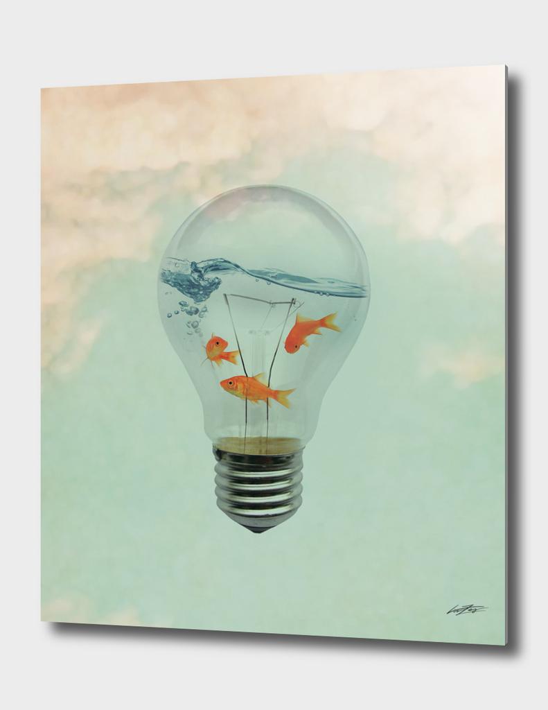 Ideas and Goldfish