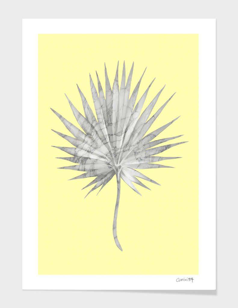 White Marble Fan Palm Leaf on Yellow Wall