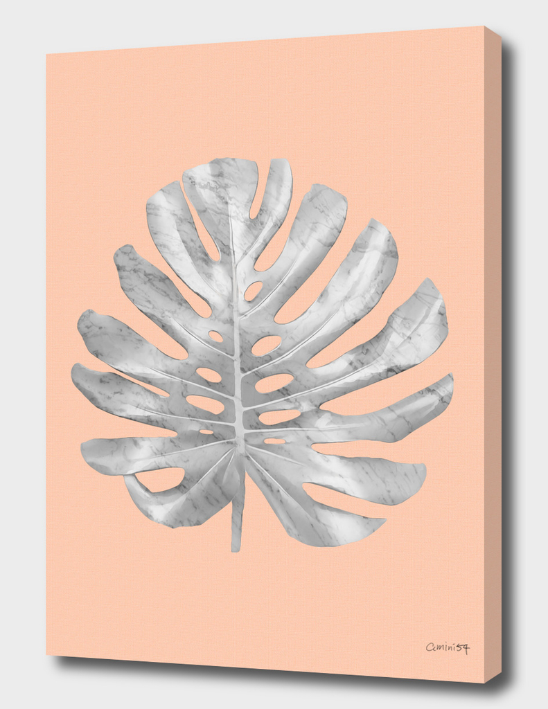 White Marble Monstera on Peach Wall